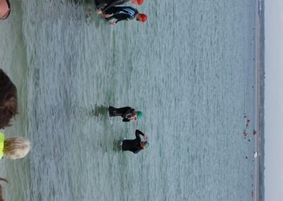 49 Lis Parham Solent Swim