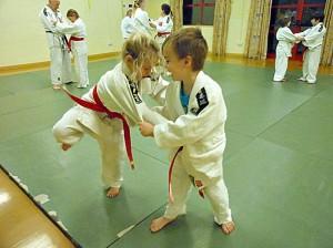 Freshwater Judo Club 1