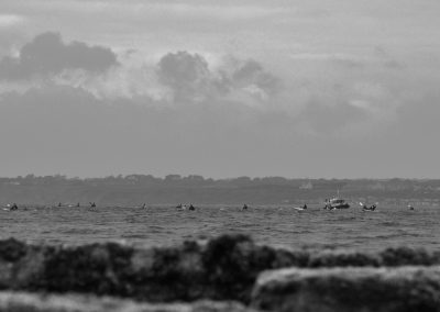 Solent Swim 2016 by Ed Garbett (1)